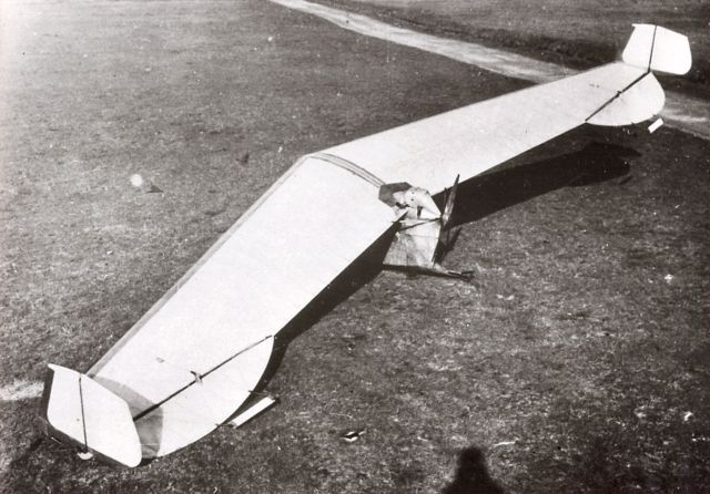 Storch V_ A. Lippisch (1929)