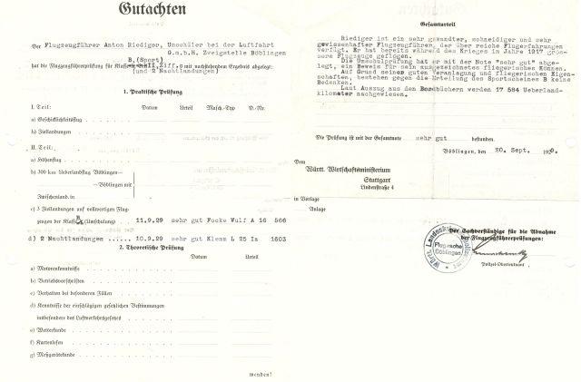 1929-09-20 Anton Riediger Gutachten (HR)